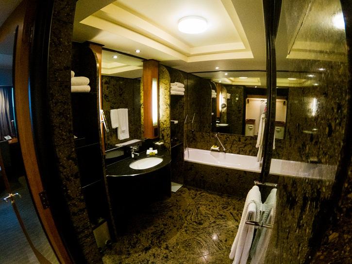 IC Sandton Towers bathroom